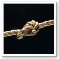 Health In The Bay Knot